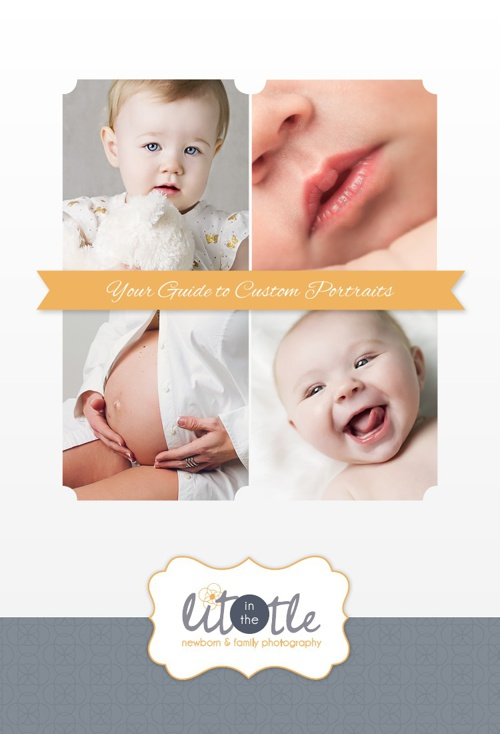In The Little Photography ~ Your Guide to Custom Portraits