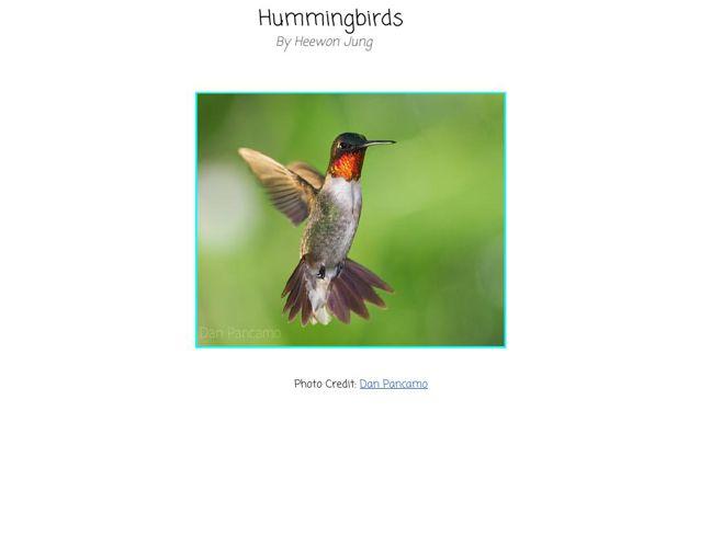 CopyofHummingbirds