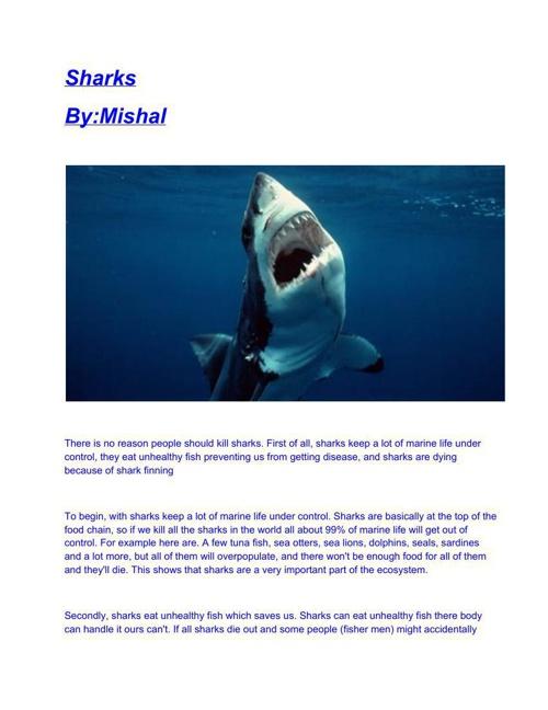 MishalsPersuasiveEssay