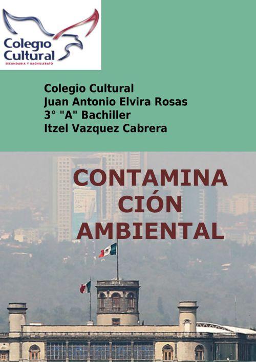 Revista Contaminación Ambiental.