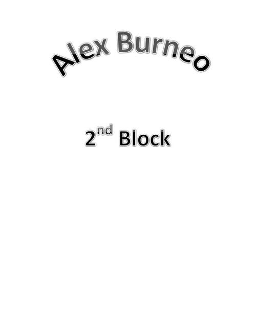 Burneo Career Project