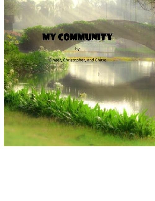 My Community