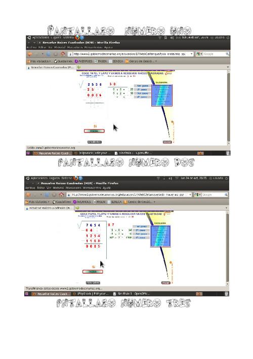 pantallazos de raices