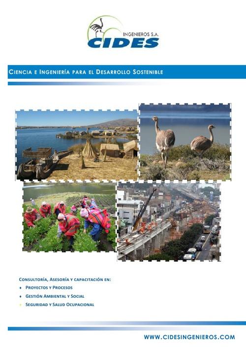 Brochure CIDES Ene2013