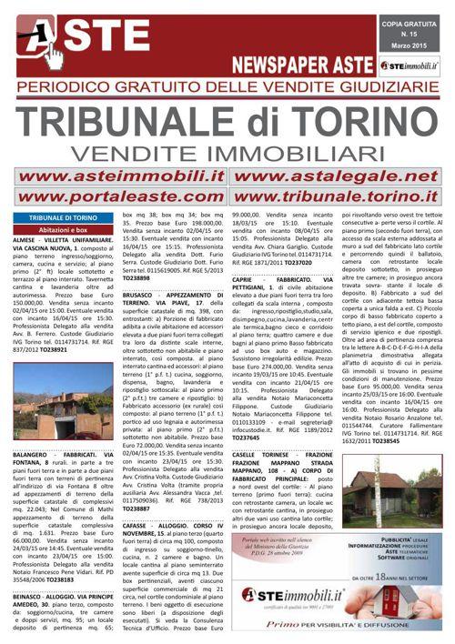 Torino marzo 2015