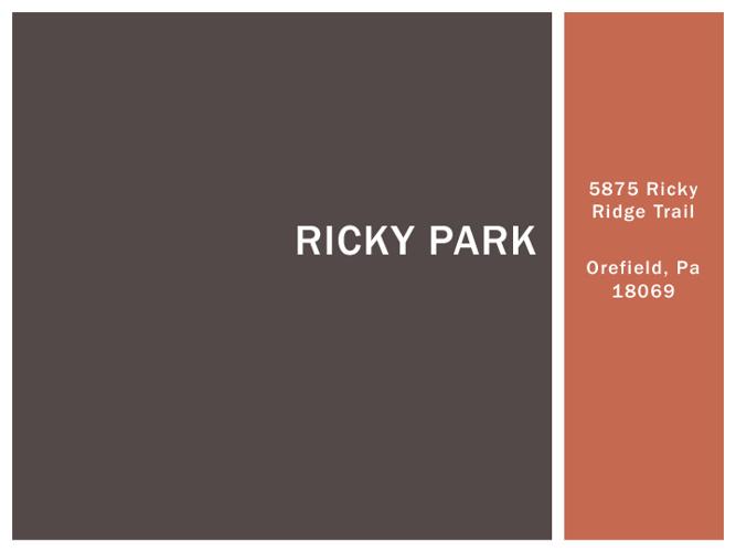 Ricky Park