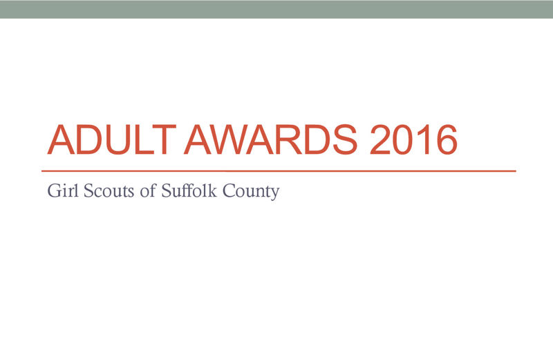 Adult Volunteer Awards 2016