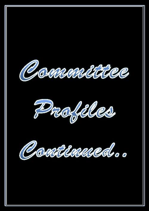 Profiles 2