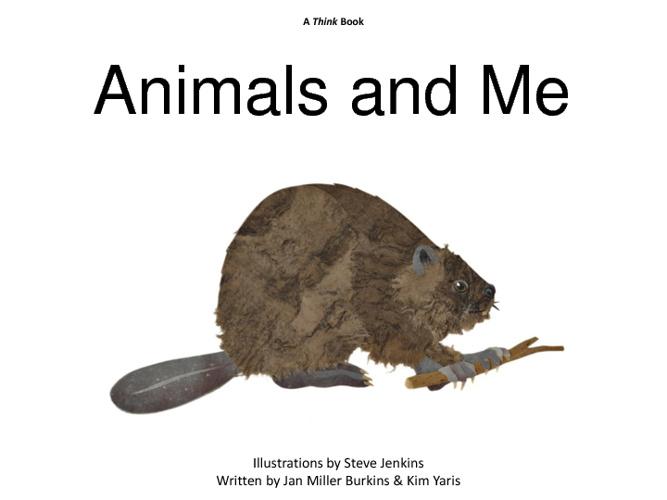 Flip Books Written By Jan Miller Burkins and Kim Yaris