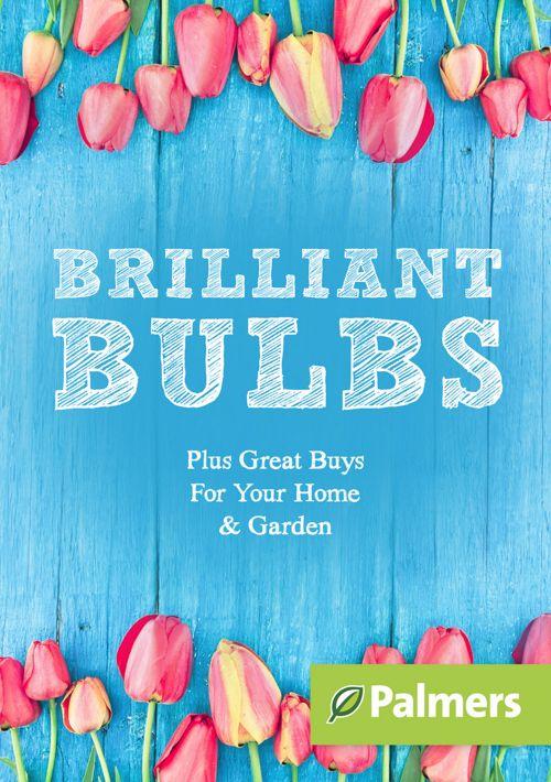 Brilliant Bulbs - Autumn 2017