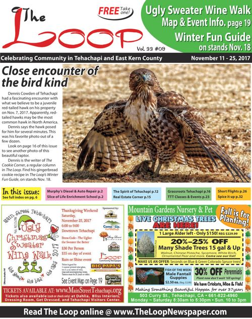 The Loop Newspaper Vol 33 No 09 - Nov 11 to 25, 2017