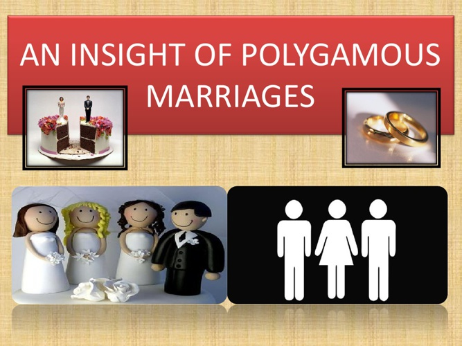 AN INSIGHT POLYGAMOUS MARRIAGES
