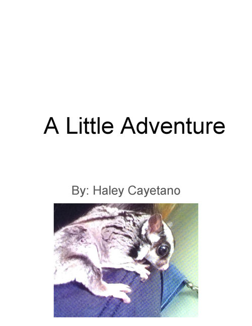 Children's Book Template for Creative Writing 1B - Cayetano, Hal