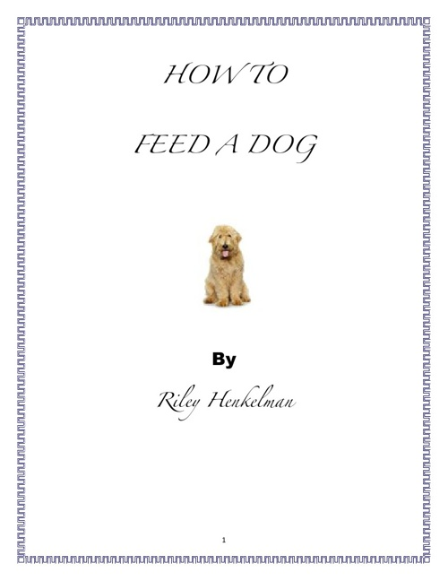 How to Feed a Dog by Riley Henkelman