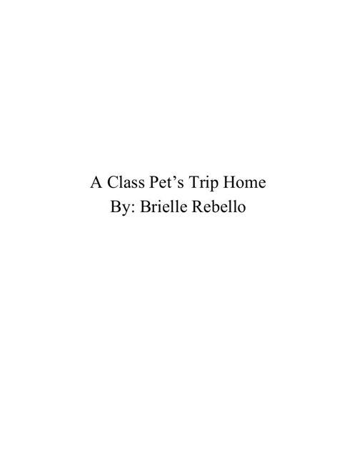 BRIELLEscompletebook3