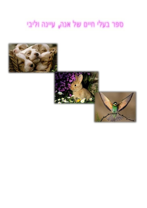 עיינה ואנה סיפור על בעלי חיים