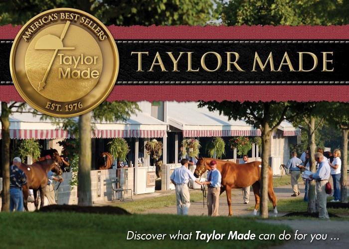 2013 Yearling Sales Brochure
