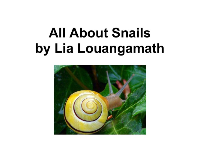 Lia's snail book