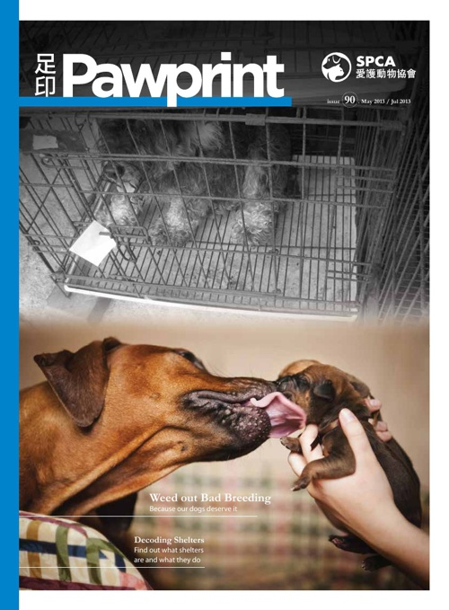 Pawprint issue 90