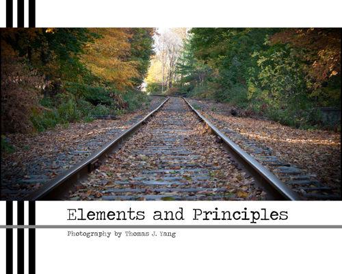 Elements and Principles-Thomas J. Yang
