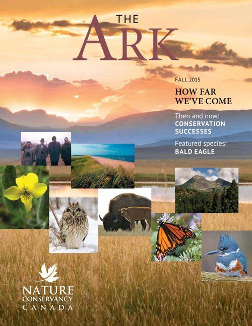 Ark - Fall 2015