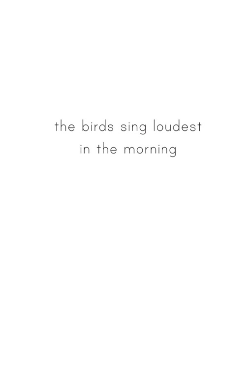 The Birds Sing Loudest in the Morning