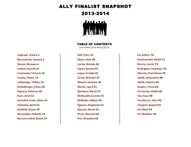 Ally Finalist Snapshot 2013-2014