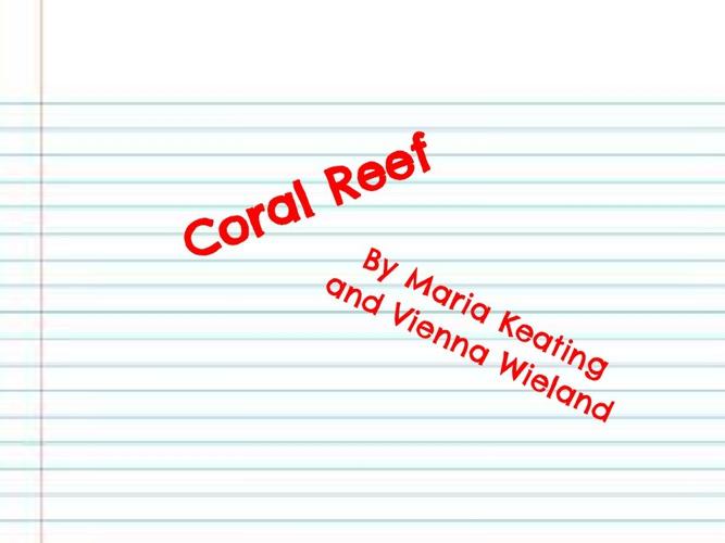 Coral Reef Yo