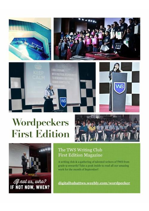 Wordpecker Express 01