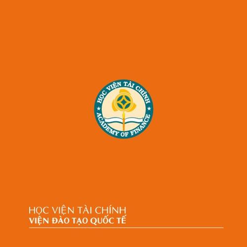 Brochure IIFE (Vietnamese, 2011 - 2012)