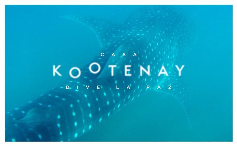 Casa Kootenay Dive La Paz