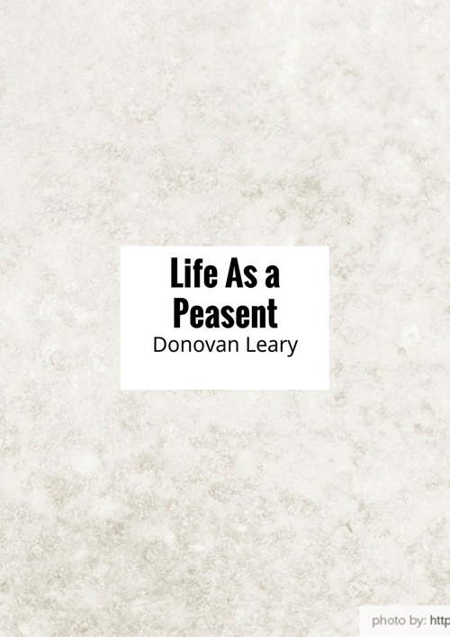 Life As a Peasant