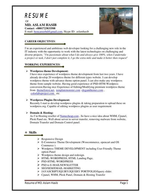 Hasib-Developer-CV