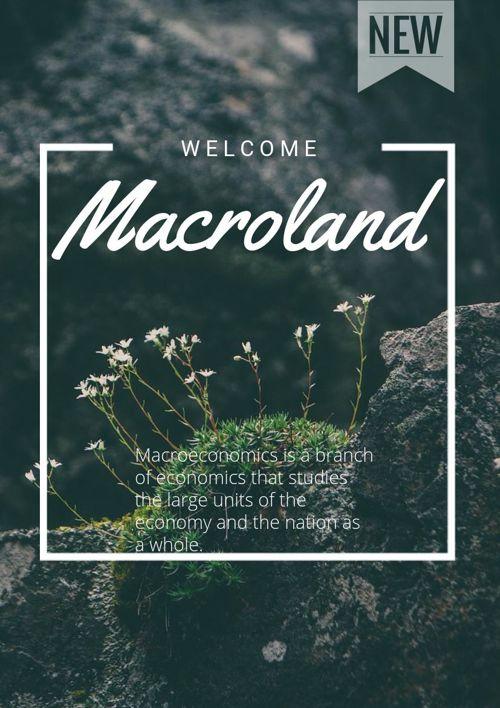 Mr. Macronomics - Macroland