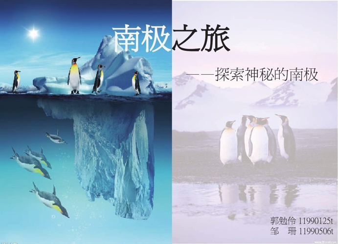 探索神秘的南极