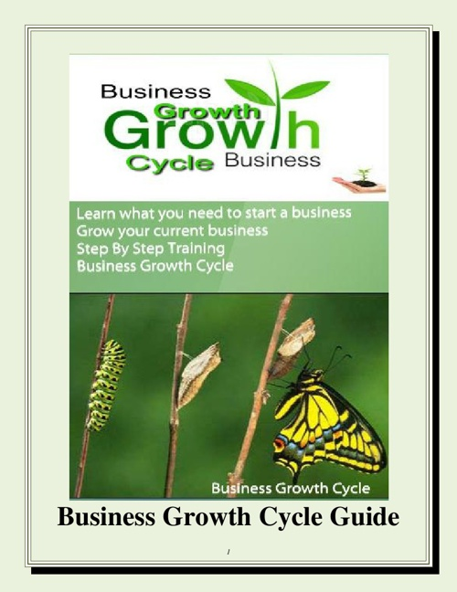 Business Growth Cycle Guide