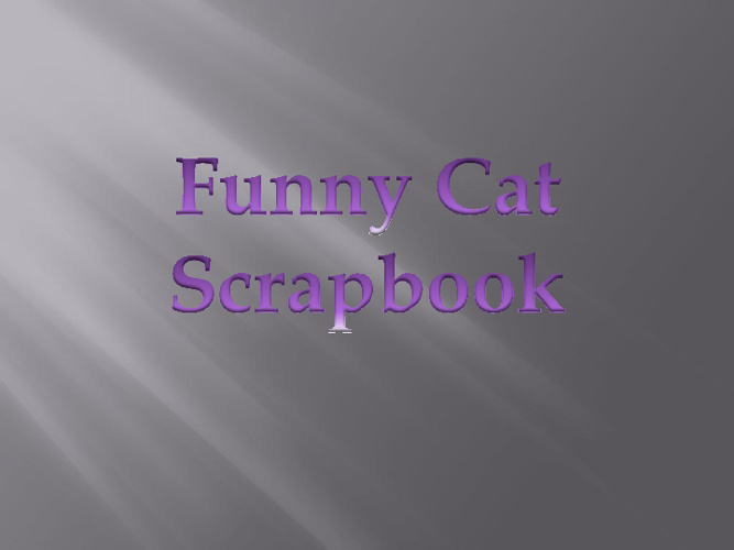 Funny Cat Scrapbook
