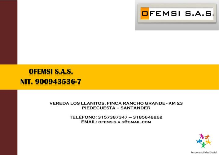 BROCHURE OFEMSI S.A.S.