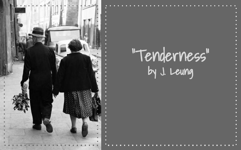 Tenderness by Jennifer L