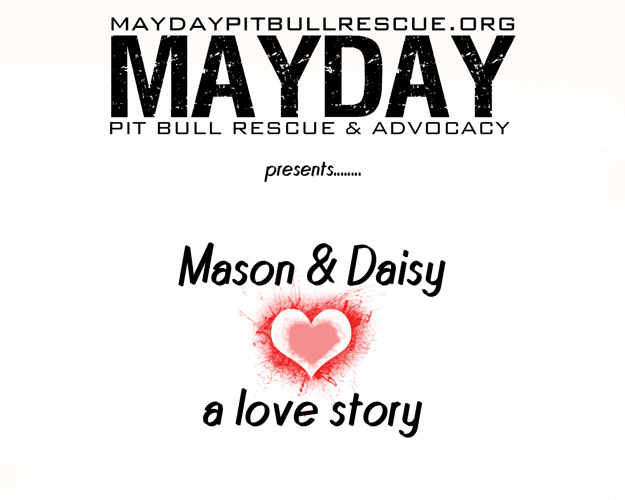 A Love Story...Mason and Daisy