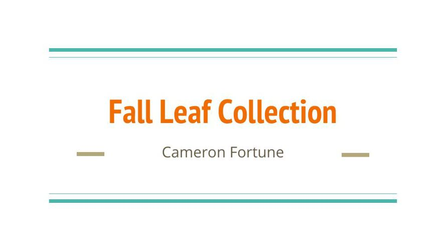 Cameron Fortune's Fall Leaf Collection