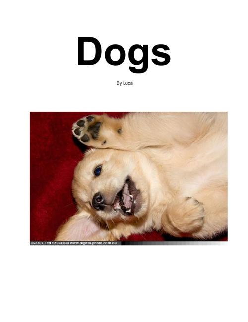 Dogs - Luca