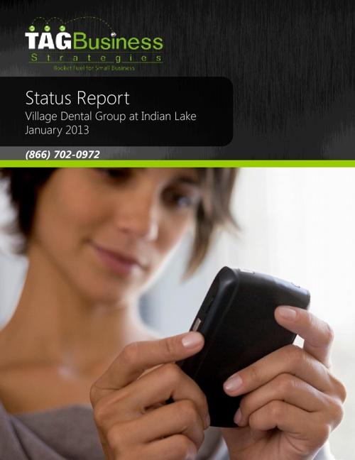 VDG Status Report January 2013