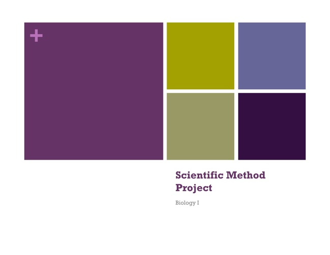 BioI-ScientificMethodProject