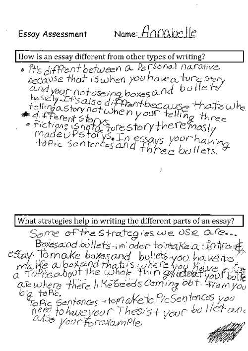 What is an essay? Essay strategies?