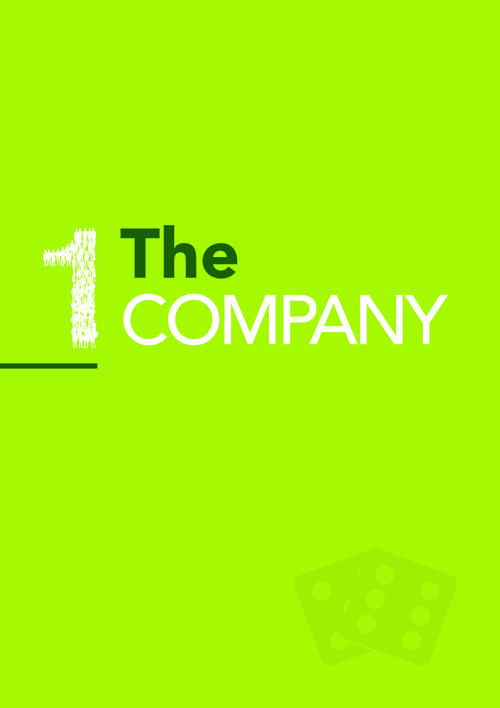 1. THE COMPANY