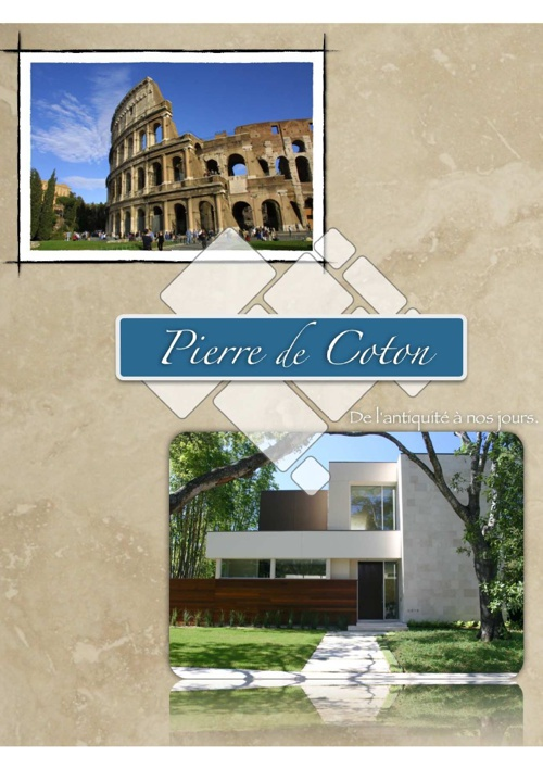 Pierre de Coton