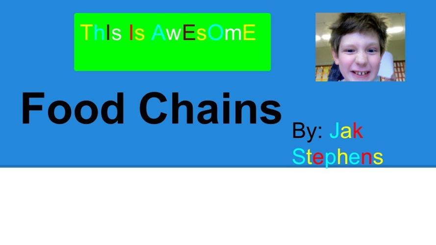 FoodChainsAndFoodWebs-1