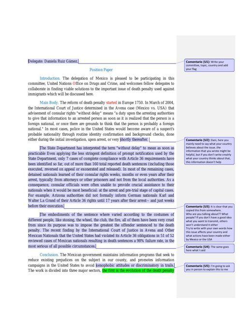 Daniela Ruiz position paper