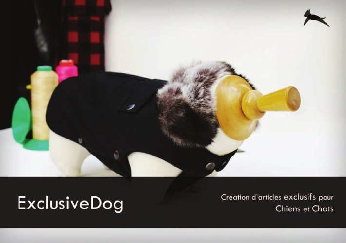 Catalogue ExclusiveDog